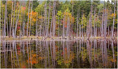 Adirondack Sept. 2013