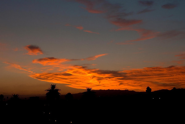 Sunset in Los Angeles on July 19th. This was Developed with Adobe Lightroom for windows. This was my first attempt using LR.  Model:   Canon EOS-1D Mark II N Size: 3013x2021 Bytes: 342067 Aperture: f/5.0 ISO: 400 Focal Length: 42mm Exposure Time: 0.008s (1/125) Flash: Flash did not fire, compulsory flash mode Exposure Program: Normal program Exposure Bias: 0 ExposureMode: 0 White Balance: auto