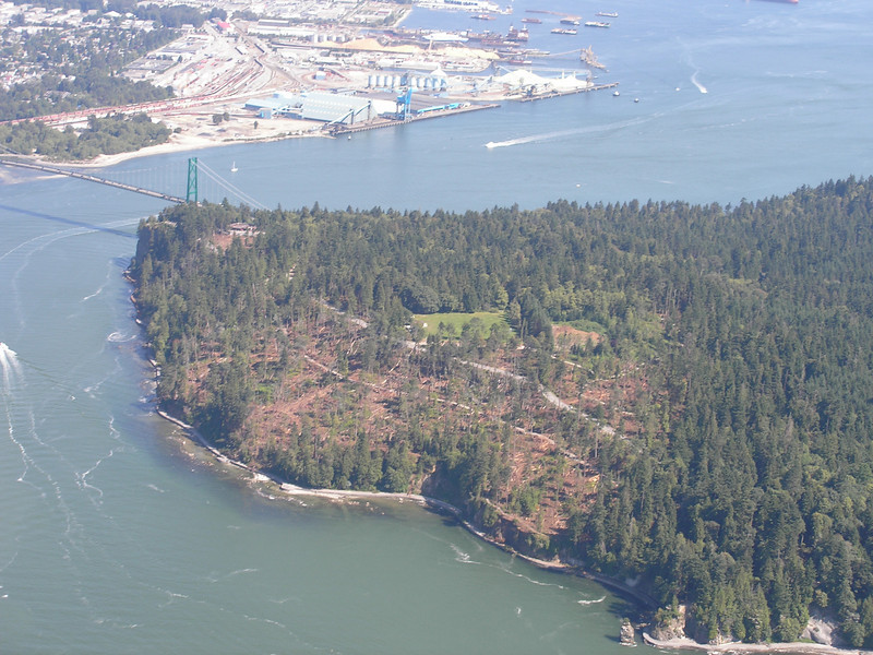 P8234180 Stanley park after wind storm from the air