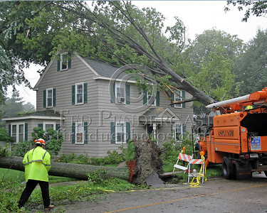 A House On Statler Road In Belmont,Mass. With Two Trees Down