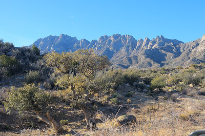 Aguirre Springs Recreation Area (BLM)