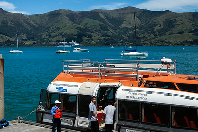 Akaroa & Wellington, NZ