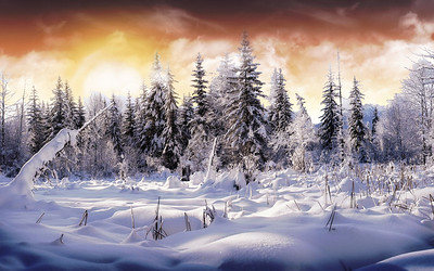 hd-winter-nature-wallpapershd-winter-wonderl---second-version---wallpaper-download-free-iltxw6f0