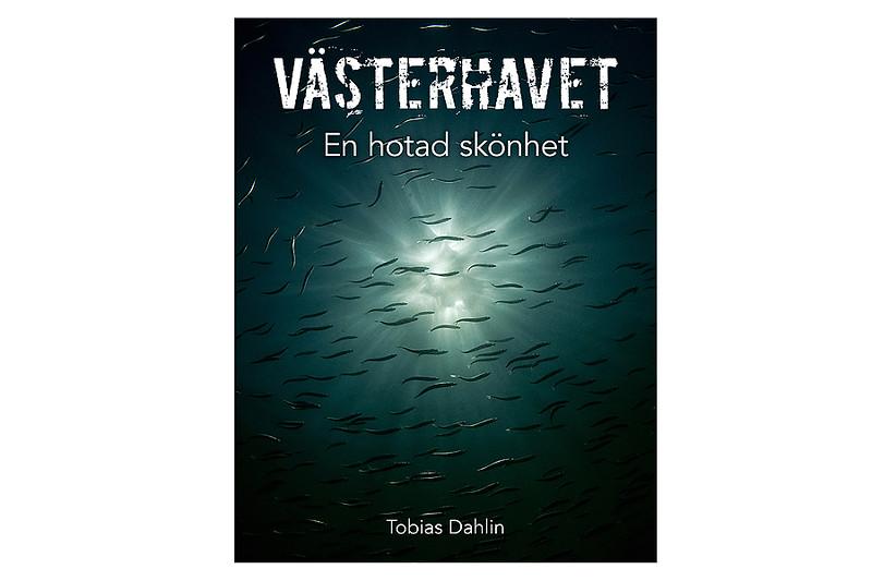 Boksignering, Havets Hus, Lysekil 28/12