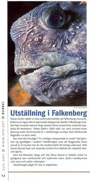 Ur tidningen DYK, augusti 2007