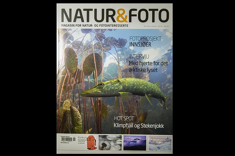 Tobias i Natur og foto, nr 2 2018