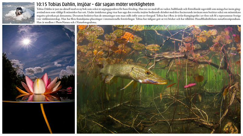 Natur 2017: Tobias håller bildföredrag.