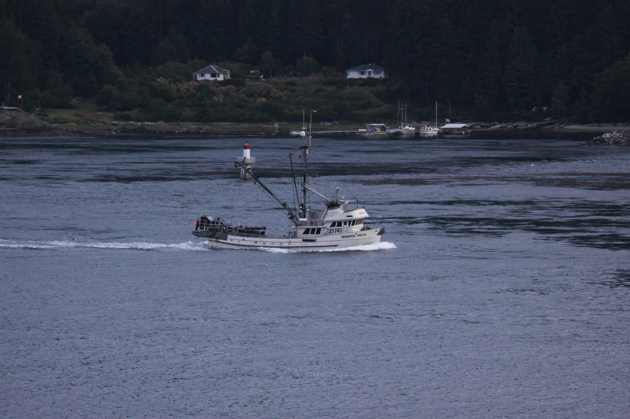 One of many working fishing boats.