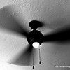 A ceiling fan at the Penny Black Cafe in the Commodore Motel in Albury, NSW in December 2017