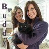 Buddy was adopted from the Cat House and Adoption Center on Saturday, April 28, 2012.