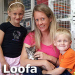 Loofa  was adopted from the Cat House and Adoption Center on Saturday, September 15, 2012.