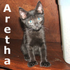Chance and Aretha were adopted together from their foster home on Friday, August 20, 2010.