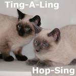 Iris, Hop-Sing and Ting-A-Ling were adopted from the Cat House and Adoption Center on Thursday, August 26, 2010.