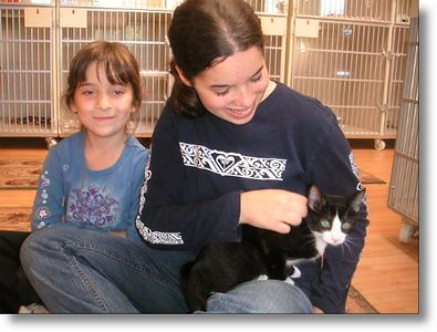 """""""Topper""""<br /> Charm's last kitten is more than ready to find a home!<br /> Topper adopted!   7-9-03<br /> <br /> Topper is his name and he is a handsome Tuxedo Boy.  He plays well independently or with the others but, he'd really like a special loving home to call his own.  And, he got it.  This one is near and dear to Feline Friend's hearts.  His mommie came in just days before delivering kittens but a special person saw her and took her home to love and care for.  Charm was lucky, she had a safe, caring home to have her kittens in.  Topper has had a great start and been loved since the day he was born."""