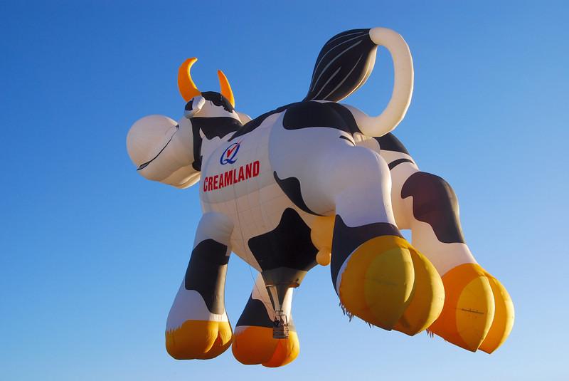 Creamland cow.