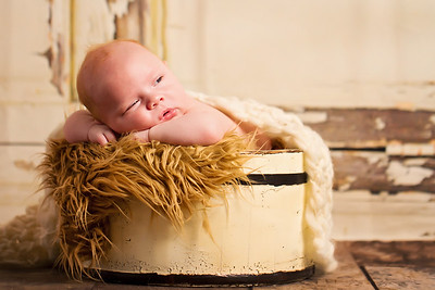 Alexander newborn session