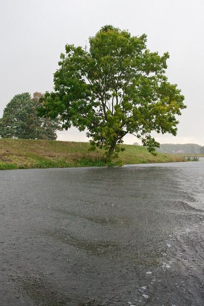 In de stromende regen over de Dieze in 's Hertogenbosch.