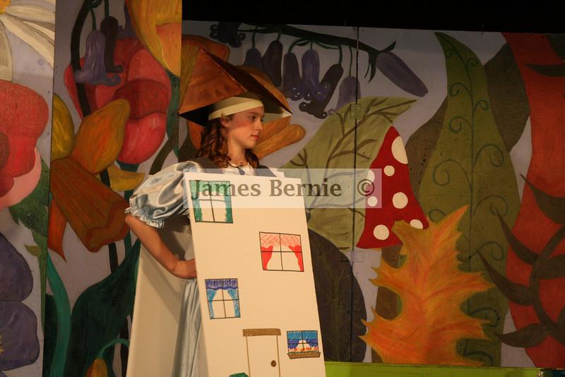 'Alice in Wonderland', Loredo Middle School, Aurora, CO, April 2008