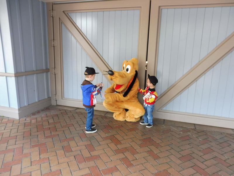 2018 Disneyland-1010028