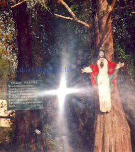 """Miracles?  Why yes there are."" This photograph was taken in a Louisiana bayou and while the Jesus cut-out and the Swamp Prayer itself are both tangible and explainable -- the light in the middle is not the sun, nor was there a reflective surface from which the light could have come.  And I certainly didn't photoshop it in.  So, look into the light and tell me what you see."