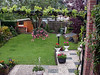 Backgarden of my parent