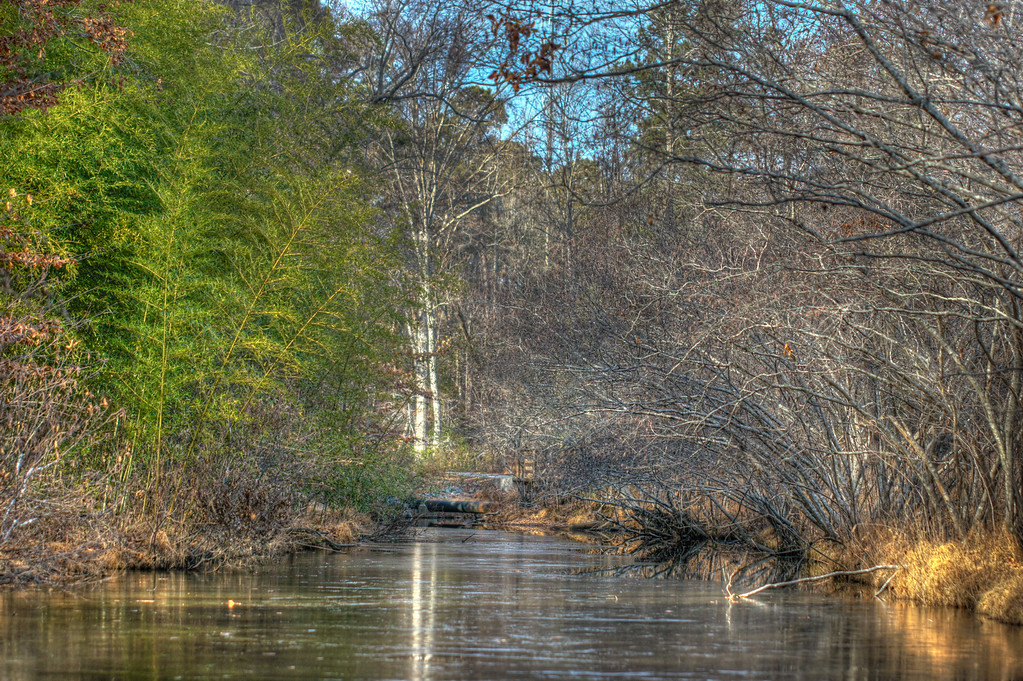 This was a nice creek in North Carolina.  Taken from the bottom rung of the bridge for this one.