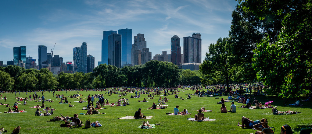 Summer in NYC at the Sheeps Meadow.  Summer in Central Park is wonderful.