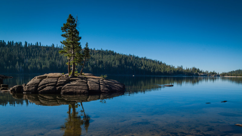 A lone tree on a rock in the middle of a lake in Northern California.