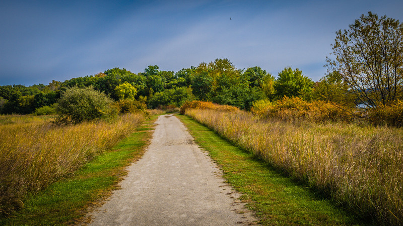 Gravel path in Starved Rock.