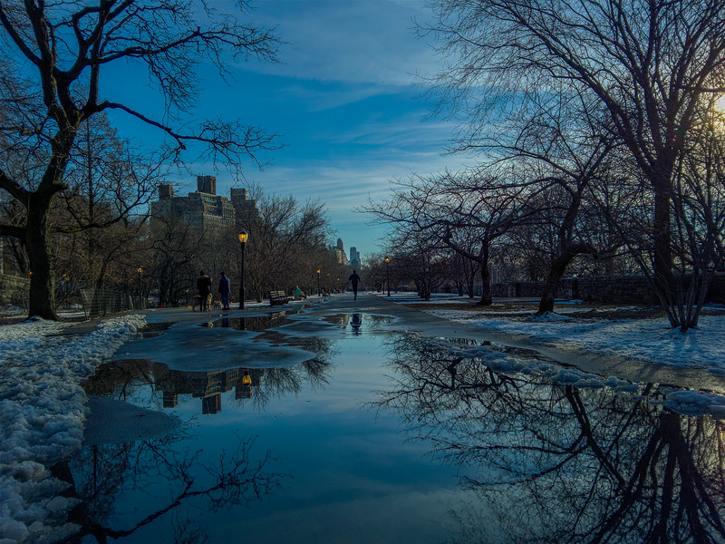 Riverside Park Reflections