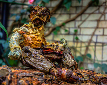We took some wonderful close up pictures of some Figurines at the DC Botanical Gardens.