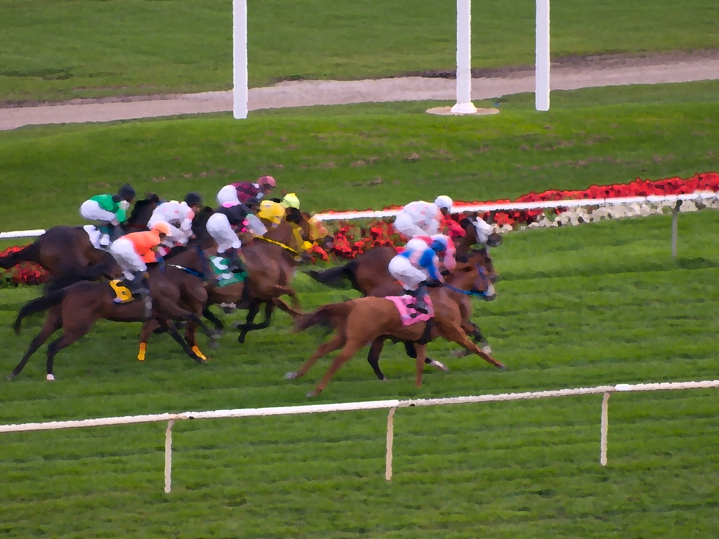 Loved the colors of the horse racing.