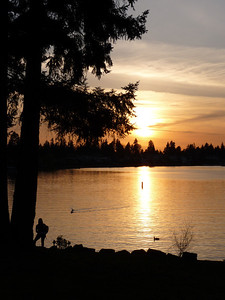 Lake Meridian, Kent, Washington. Early Summer night at the Lake. Father's Day 2011.