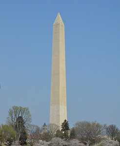 Washington Monument with Cherry Blossoms. Beautiful day. March 2012
