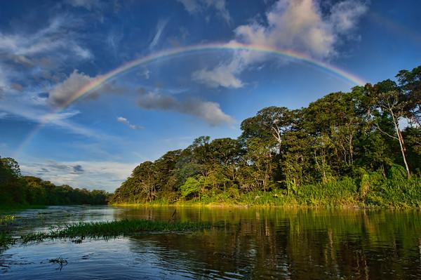 A rainbow arches across the rainforest after a sudden rain storm, Pacaya Samiria National Reserve, Upper Amazon, Peru