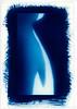 Equilibrium. Marlow, UK. <br /> Cyanotype Rex.