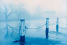 Misty Thames. Mill End nr Hambledon, UK.<br /> Cyanotype and gum bichromate.