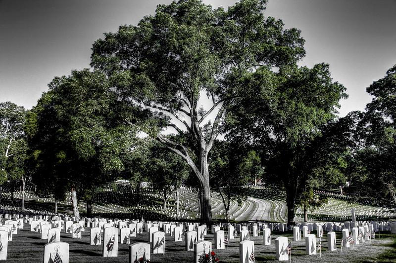Marietta National Cemetary, Memorial Day 2012