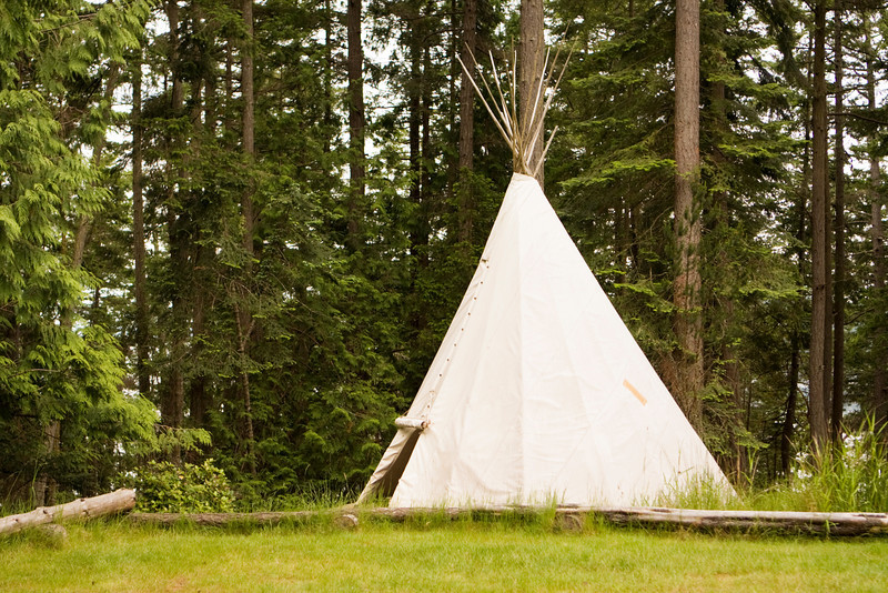 A single, solitary teepee in a field. Teepees are used in many summer camps as shelter for the campers.