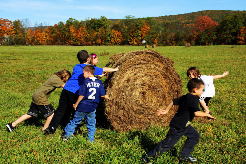Rolling the bale at Sol's Farm