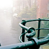 foggy bridge 2