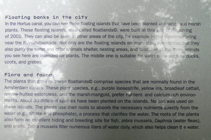 """""""schwimmende inseln"""" in amsterdam, ohne erde. zur regenerierung des wassers und als ruheplatz und kinderstube der fauna. eine gute idee, wie ich finde!"""