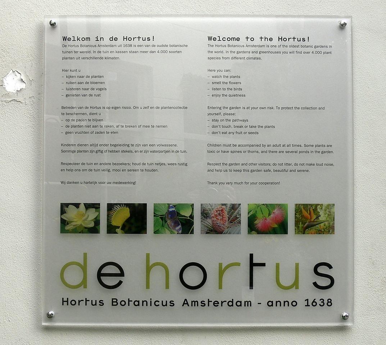 """heute gehe ich zum alten botanischen garten """"de hortus"""" im zentrum amsterdams.<br /> <br /> today i visit the old botanical garden """"de hortus"""" in the city of amsterdam."""