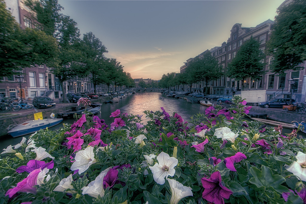 Bloomin' canal