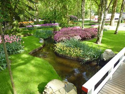 Amsterdam Keukenhof Gardens 2015  8