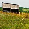 Alleghany County, NC, Barn