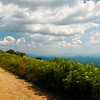 View From White Top Mountain, VA II