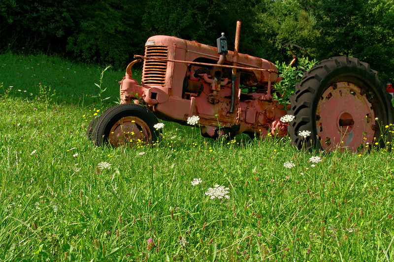 Pink Tractor - Hast Farm, Alleghany County, NC