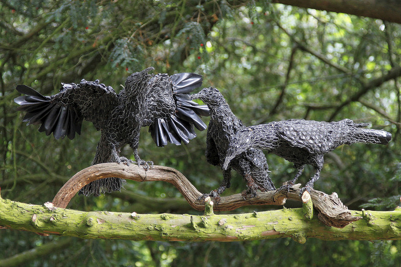 Wire Crows.   The black plumage is made from black bin bags.