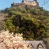 Schloss Marksburg bij Braubach a.d. Rijn